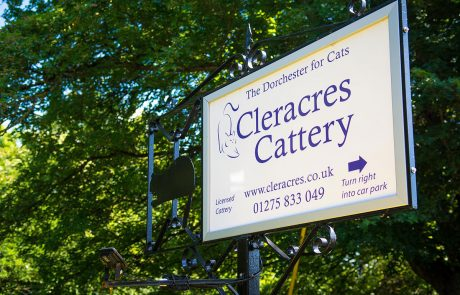 Cleracres cattery sign