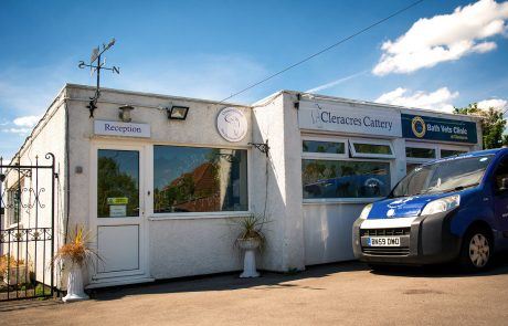 Cleracres cattery fascia signage