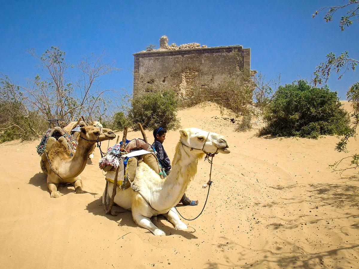 Essaouira Morocco.